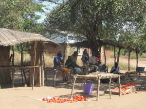 Village tomato stand