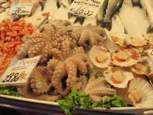 Octopus and scallops--in case you haven't seen enough creatures from the sea yet