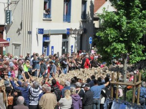 Running of the Sheep Saint Remy, France